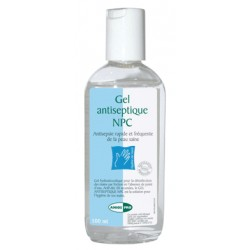 GEL ANTISEPTIQUE 100ML