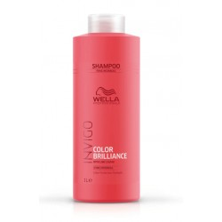 SHAMPOOING COULEUR FAN 1000 ML